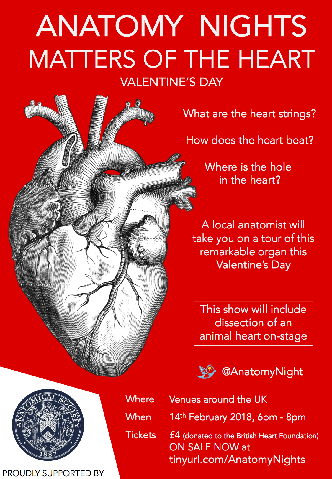 Anatomy Nights